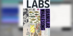 Beitragsbild des Blogbeitrags Spitfire Audio's New Free LABS Release Features Granular Whalesong Textures