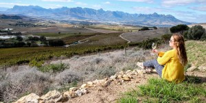 Beitragsbild des Blogbeitrags Things to do in Stellenbosch, South Africa – A Guide to Wine Cultivation and Culture in the Western Cape